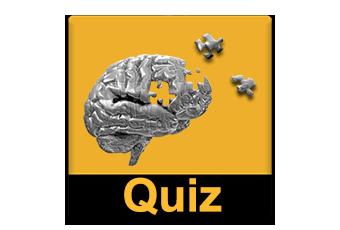 Gör en Quiz